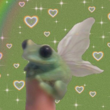 butterfly frog