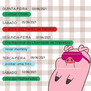 calendar pig