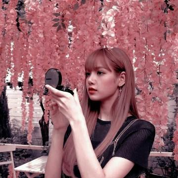 Lisa widget